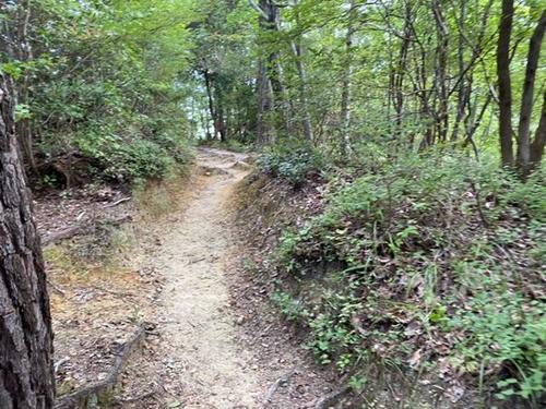 10月2日 有馬温泉散策コース 下見5.jpeg